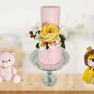 Cake-Decorating-Module